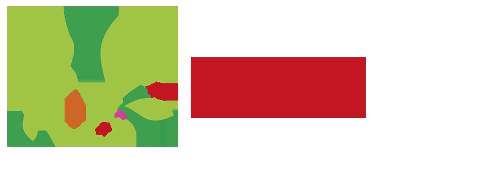 Bumerang-Workshop